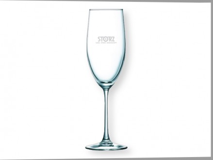 The Sparkler Champagne Flute Glass   (05014-01)